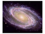 NASA - M81 Galaxy Poster