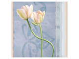 Tulip and Blue Tapestry I Print by Richard Sutton