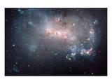 NASA - NGC 4449 Stellar Fireworks Print
