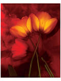 Tulip Fiesta in Red and Yellow I Print by Richard Sutton