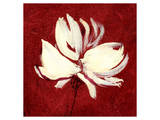 Cream on Crimson Prints by Sarah Parker