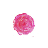 Where the Roses Bloom Again Giclee Print by Jessica Durrant