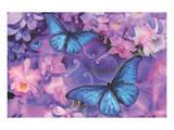 Violet Orchid Morpheus Poster af Alixandra Mullins