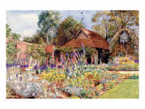 The Garden at Golden Field Print by Juliet Nora Williams