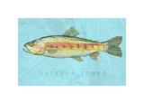 Rainbow Trout Giclée-Druck von John W. Golden