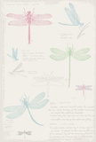 Dragonfly Diary Posters by Maria Mendez