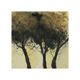 Seasonal Trees III Art by Susan Brown