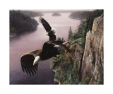 Wings Over the St. Croix Giclee Print by Kevin Daniel