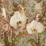 Orchid Crackle II Giclee Print by Tania Bello