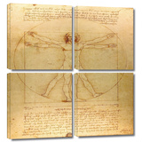 Vitruvian Man 4 piece gallery-wrapped canvas Posters by Leonardo DaVinci
