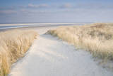 Dunes on Langeoog Giclee Print by Adam Brock