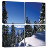Lake Tahoe in Winter 4 piece gallery-wrapped canvas Gallery Wrapped Canvas Set by Kathy Yates
