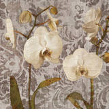 Damask Blooms I Giclee Print by Tania Bello