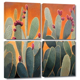 Cactus Orange 4 piece gallery-wrapped canvas Prints by Rick Kersten