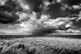 Impending Storm Giclee Print by Steve Docwra