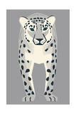 Snow Leopard Giclee Print