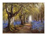 Budding Spring Premium Giclee Print by Daniel Sherrin
