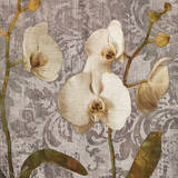 Damask Blooms II Giclee Print by Tania Bello