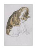 Cat Premium Giclee Print by Gwendolen John