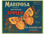 Mariposa Fancy Northwestern Apples Posters