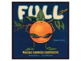 Full Oranges Prints
