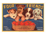 Four Friends Selected Tomatoes Prints