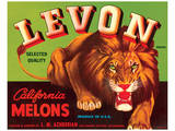 Levon Brand California Melons Art