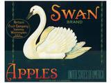 Swan Brand Apples Print