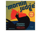 Mornin Judge Grapefruit and Oranges Posters