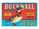 Duckwall D-B Brand Hood River Pears Print