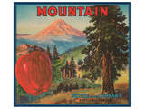 Mountain Apples Poster