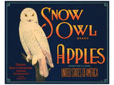 Snow Owl Brand Apples Posters