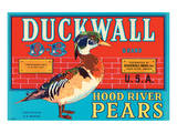 Duckwall D-B Brand Hood River Pears Posters