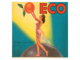 ECO Enrique Giner Vidal Oranges Prints