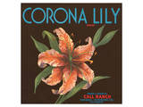 Corona Lily Brand Citrus, California Print