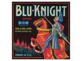 Blu-Knight Brand Art