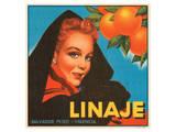 Linaje Valencia Oranges Poster