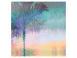 Palmae Square IV Prints by Melinda Bradshaw