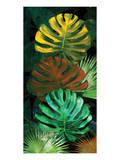 Tropical Monstera Prints by Melinda Bradshaw