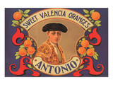 Antonio Sweet Valencia Oranges Prints