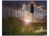 Oak Island I Prints by Steve Hunziker