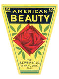 American Beauty Art