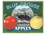 Blue Grouse Canadian Apples Poster