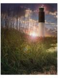 Oak Island II Plakat af Steve Hunziker