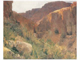Ain Djiddy Gorge near the Dead Sea Prints by Eugen Bracht
