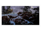 Howling Wolf Poster by Steve Hunziker