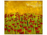 Sunny Poppy Field II Posters by Anne Hempel