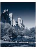 New York Central Park Art