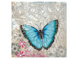Light Blue Butterfly Posters by Alan Hopfensperger