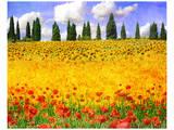Lombardy I Kunstdruck von Chris Vest